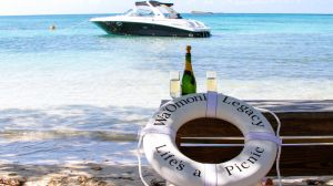 Life's-a-Picnic power yacht moored off Bird Island