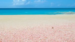 Deserted Pink Tinged Beaches at Palmetto Point, Barbuda