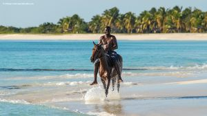 Horse Riding along Deserted Beaches, Barbuda