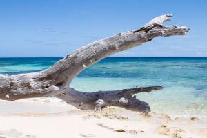 yacht-charter-antigua-barbuda-scenery-landscape-10.jpg