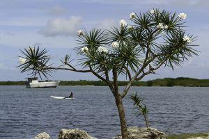 yacht-charter-antigua-barbuda-scenery-landscape-11.jpg